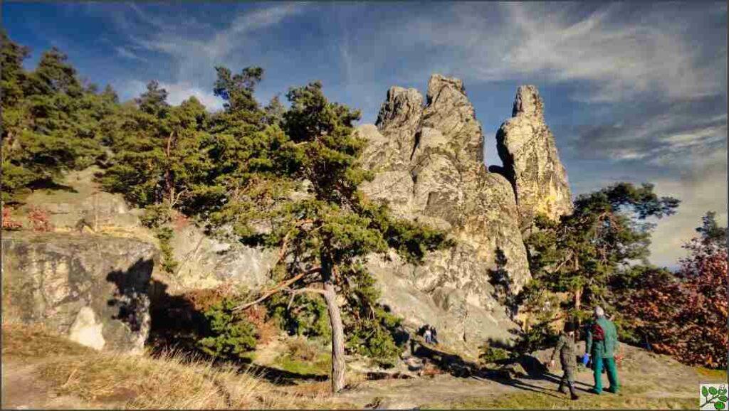 Fastenwandern im Harz Teufelsmauer