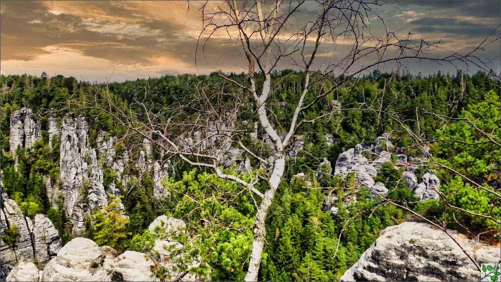 Natur Felsen Fastenwandern Termine